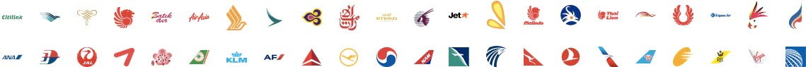 airlines partners